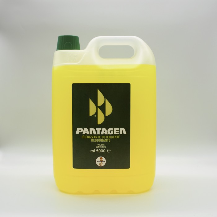 16489 masnata igienizzante pantagen lt 5